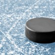 Black hockey puck — Stock Photo #24493197