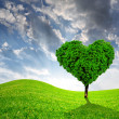 Tree in the shape of heart - Stock Photo