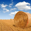 Royalty-Free Stock Photo: Straw bales