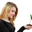 Girl holding in hand growing plant — Stock Photo