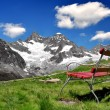 Ober Gabelhorn - Swiss alps — Stockfoto