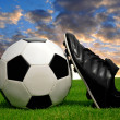Soccer ball and shoes — Stock Photo #26486979