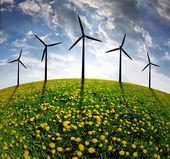 Prato con turbine eoliche — Foto Stock