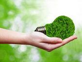 Lampadina di energia eco in mano su sfondo verde — Foto Stock