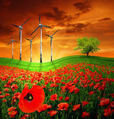 Red poppy field with wind turbines — Stock Photo