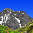 Stock Photo: Mount Dom - Swiss alps