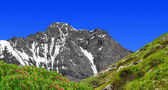 Mount dom - švýcarské alpy — Stock fotografie