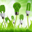 Foto de Stock  : Eco energy bulbs