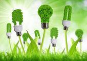 Eco energy bulbs — Stock Photo