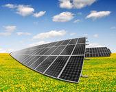 Painéis de energia solar em campo-leão — Foto Stock