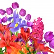Stock Photo: Spring flowers isolated on white background