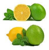 лимоны и лаймы — Стоковое фото