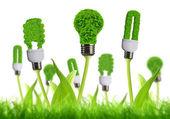 Eco energy bulb — Stock Photo