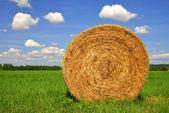 Straw bale — Stock Photo