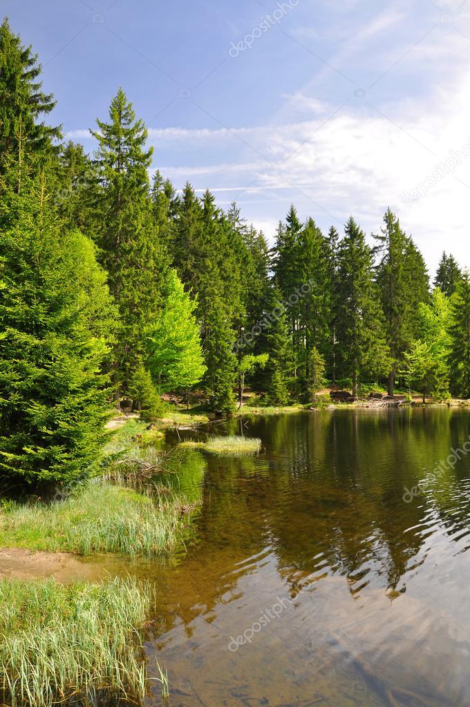 Фотообои Небольшое Озеро Арбер