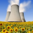 nuclear power plant — Stock Photo #30840759
