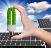 Hand holding green bulb — Stock Photo