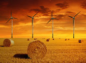 Balle di paglia con turbine eoliche — Foto Stock