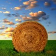Straw bale — Stock Photo #32631157