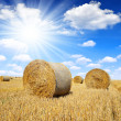 Straw bales — Stock Photo