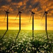 Wind turbines in the sunset — Stock Photo