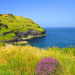 North Cornwall - England — Stock Photo