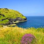 North Cornwall - England — Stock Photo #35067811
