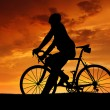 Silhouette of the cyclist — Lizenzfreies Foto