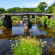 Clapper bridge in Dartmoor National Park — Stok fotoğraf