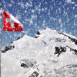 Alalinhorn with Swiss flag — Stock Photo