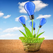 Eco energy bulbs from solar panels — Stock Photo