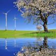 Spring tree with wind turbines — Stock Photo