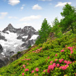 Stockfoto: Ober Gabelhorn - Swiss alps