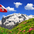 Stock Photo: Mount Monte Roswith Swiss flag