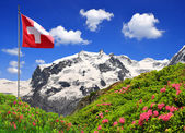 Mount Monte Rosa with Swiss flag — Stock Photo