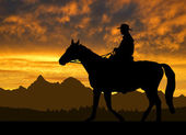 Silhouette cowboy with horse — Stock Photo