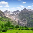 Swiss alps — Foto Stock