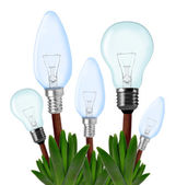 Light bulbs on plant — Stock Photo