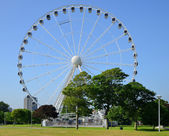 The Big wheel — 图库照片