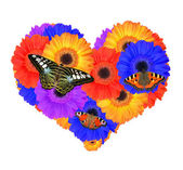 Heart from gerbera flowers — Stock Photo