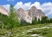 Dolomites - Italy — Stock Photo