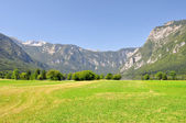 Triglav National Park — Stock Photo