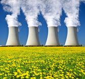 Nuclear power plant Temelin — Stok fotoğraf