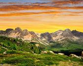 Val di san pellegrino — Stok fotoğraf