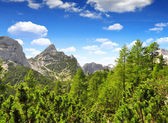 Triglav National Park - Julian Alps — Stock Photo