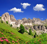 Dolomite peaks, Rosengarten — Stock Photo