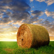 Straw bale in a lush green field — Stock Photo #50912581
