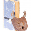 Old book with a padlock inserted through the pages — Stock Photo #29320709