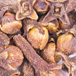 Macro spice cloves buds — Stockfoto
