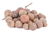 Heap of allspice fruits isolated — Stock Photo